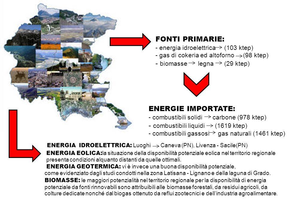 FONTI PRIMARIE: - energia idroelettrica (103 ktep) - gas di cokeria ed altoforno (98 ktep) - biomasse legna (29 ktep) ENERGIE IMPORTATE: - combustibil