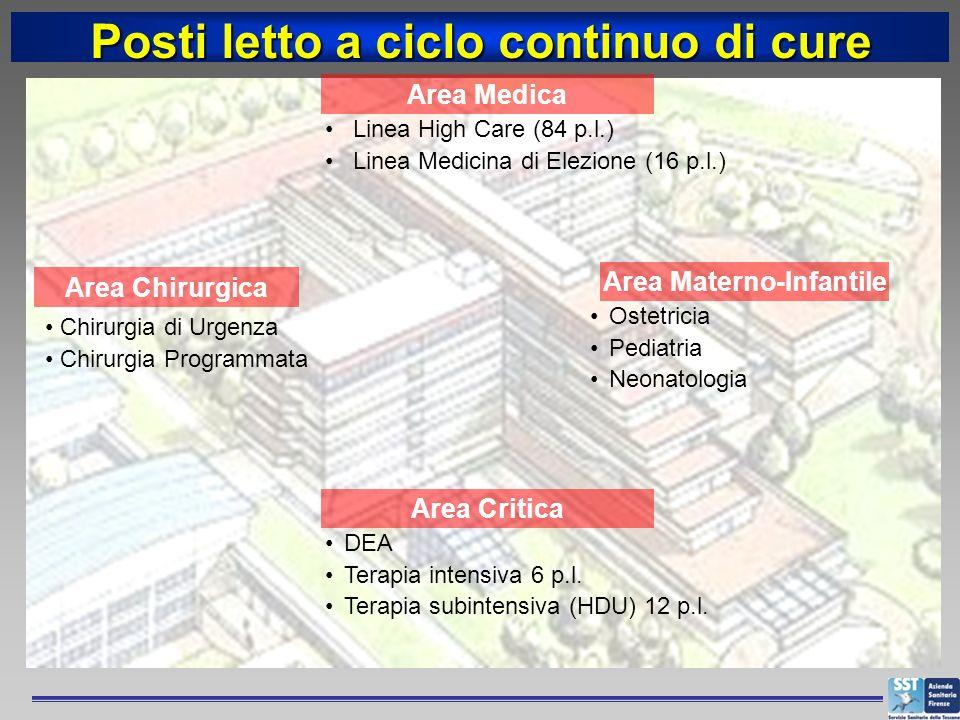 DEA Terapia intensiva 6 p.l. Terapia subintensiva (HDU) 12 p.l. Area Critica Linea High Care (84 p.l.) Linea Medicina di Elezione (16 p.l.) Area Medic