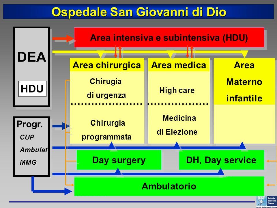 DEA HDU Progr. CUP Ambulat. MMG Ospedale San Giovanni di Dio Area intensiva e subintensiva (HDU) Day surgery DH, Day service Ambulatorio Area chirurgi