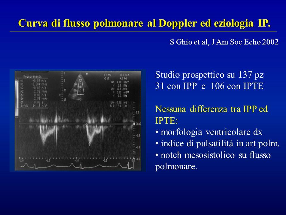 Studio prospettico su 137 pz 31 con IPP e 106 con IPTE Nessuna differenza tra IPP ed IPTE: morfologia ventricolare dx indice di pulsatilità in art pol