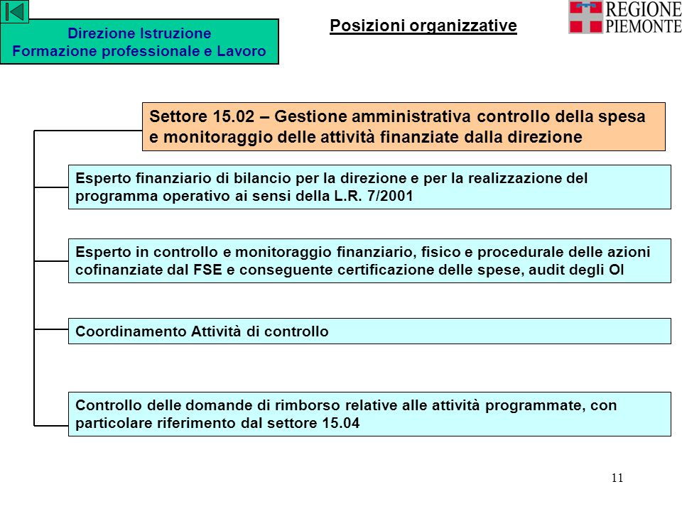 11 Esperto finanziario di bilancio per la direzione e per la realizzazione del programma operativo ai sensi della L.R.