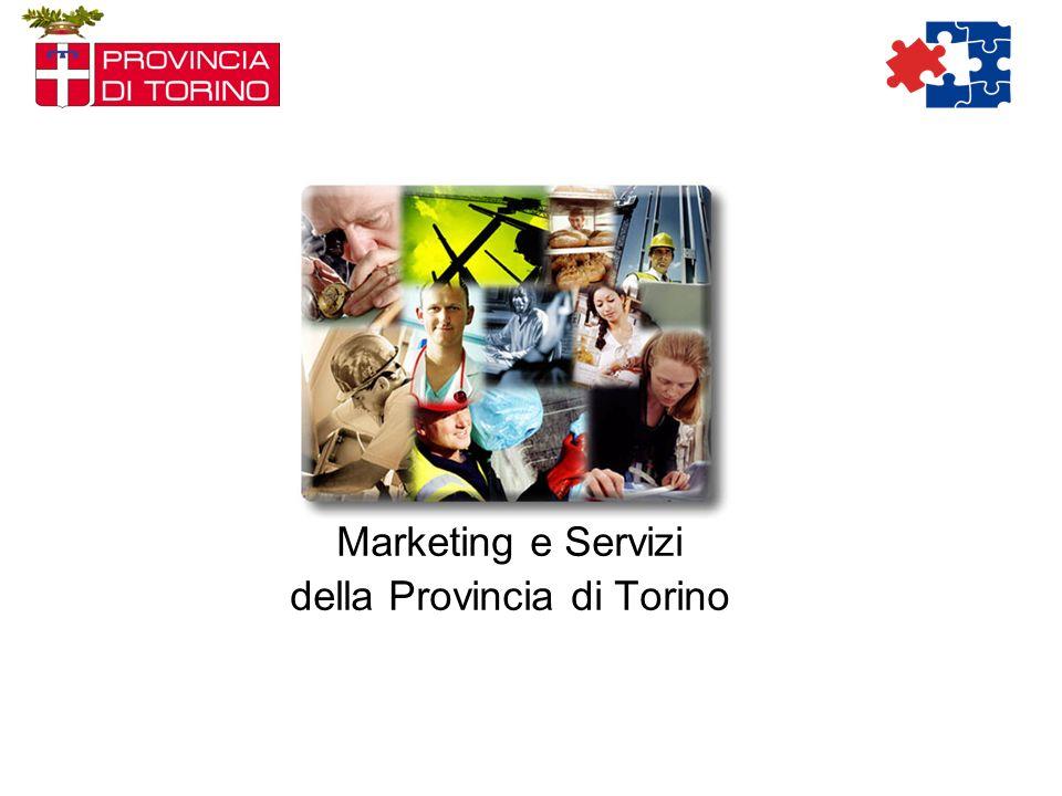 Le azioni sono state gestite attraverso la procedura di Qualità ISO 9001:2000 Processo MKGT in Provincia di Torino Definizione obiettivi Strategici Assegnazione obiettivi generali di MKGT a livello centrale Condivisione degli obiettivi specifici di MKGT Servizi per lImpiego Analisi dello scenario e redazione del Piano di MKGT C.P.I.