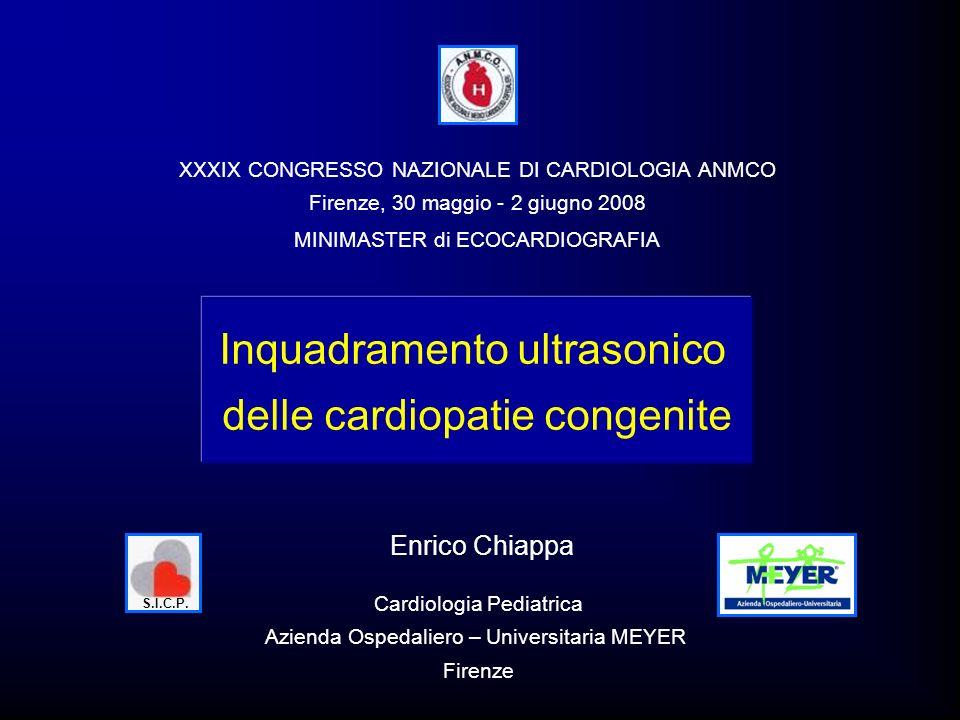 Inquadramento ultrasonico delle cardiopatie congenite Enrico Chiappa Cardiologia Pediatrica Azienda Ospedaliero – Universitaria MEYER Firenze XXXIX CO