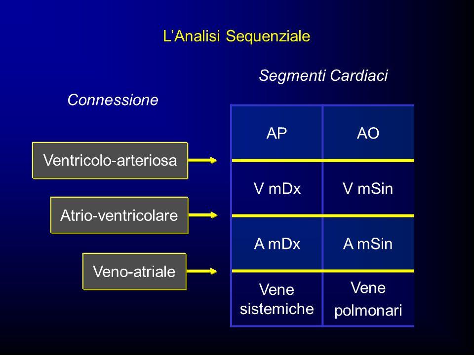 APAO V mDxV mSin A mDxA mSin Vene sistemiche Vene polmonari Segmenti Cardiaci Connessione Atrio-ventricolare Veno-atriale LAnalisi Sequenziale Ventric
