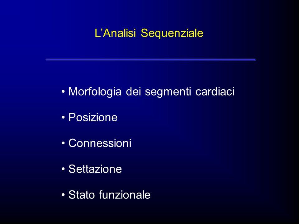 LAnalisi Sequenziale Morfologia dei segmenti cardiaci Posizione Connessioni Settazione Stato funzionale