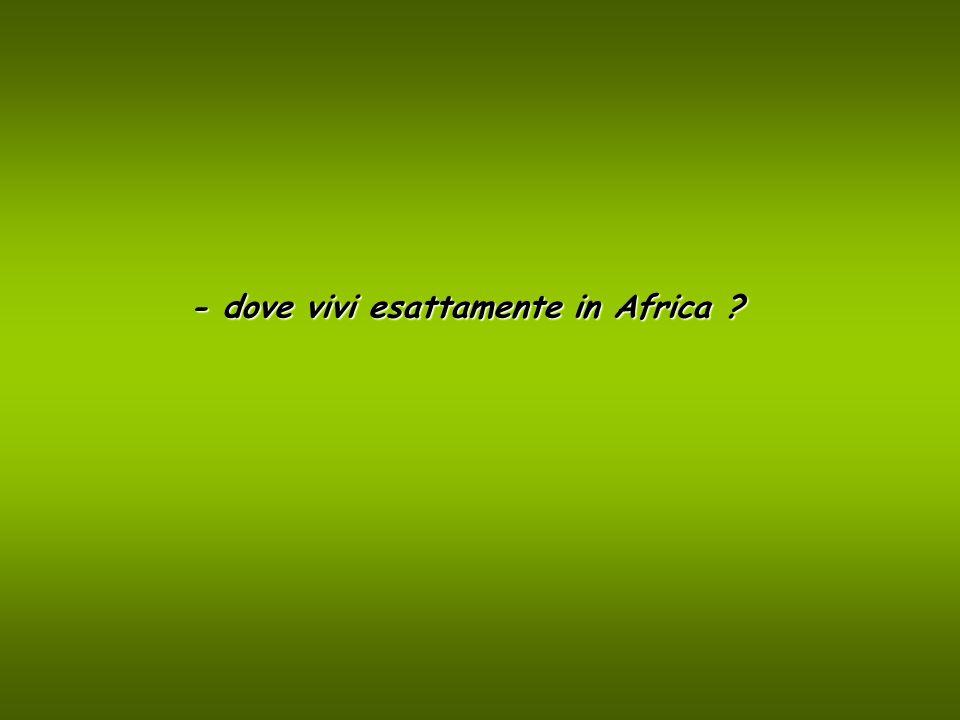 - dove vivi esattamente in Africa ?