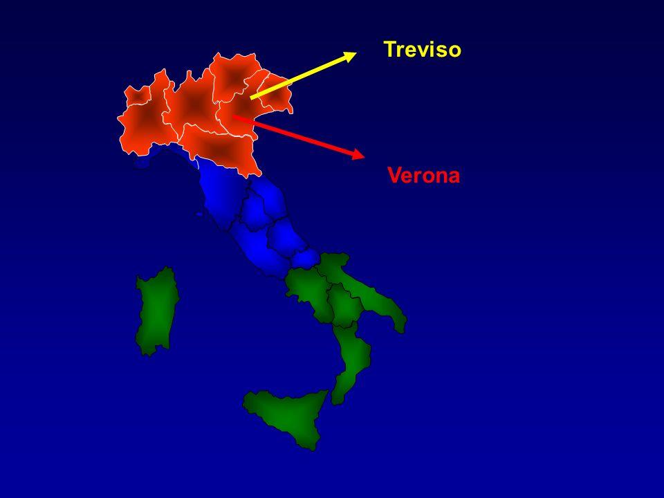 Verona Treviso