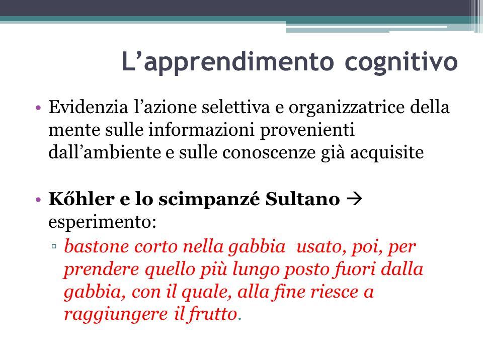 Lapprendimento cognitivo Evidenzia lazione selettiva e organizzatrice della mente sulle informazioni provenienti dallambiente e sulle conoscenze già a