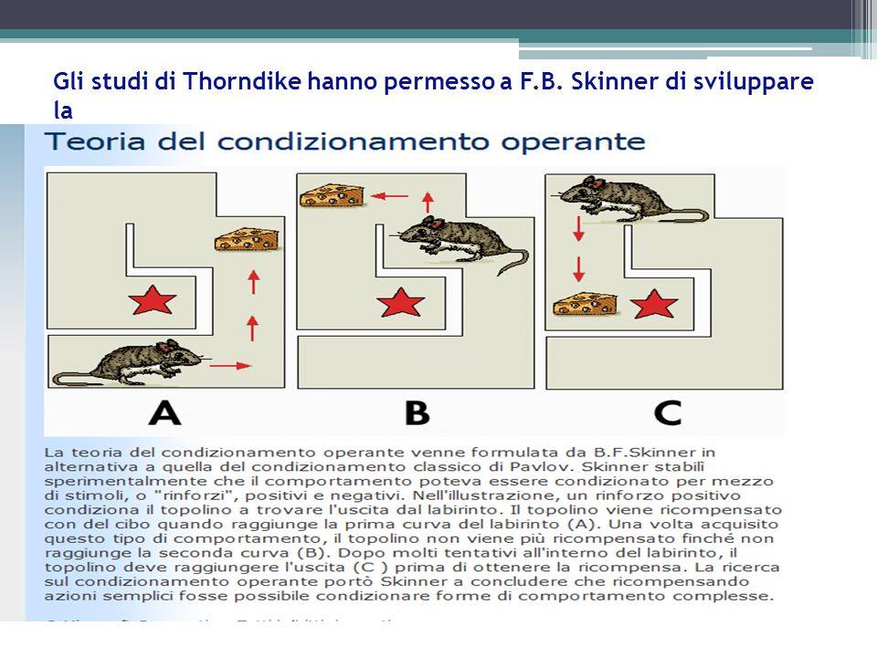 Gli studi di Thorndike hanno permesso a F.B. Skinner di sviluppare la
