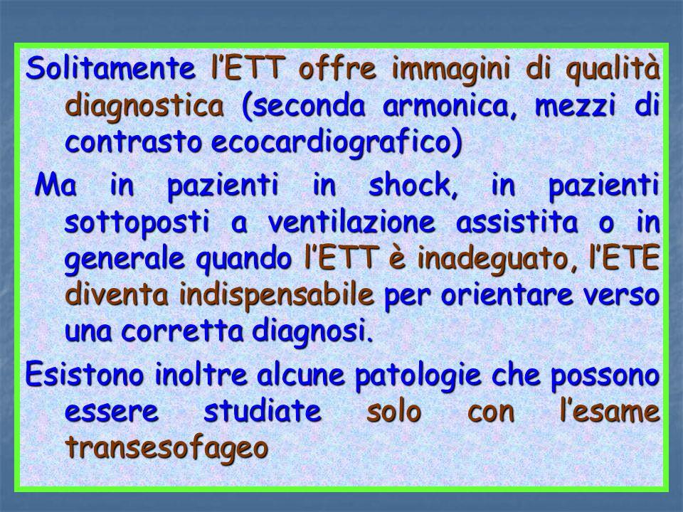 Solitamente lETT offre immagini di qualità diagnostica (seconda armonica, mezzi di contrasto ecocardiografico) Ma in pazienti in shock, in pazienti so