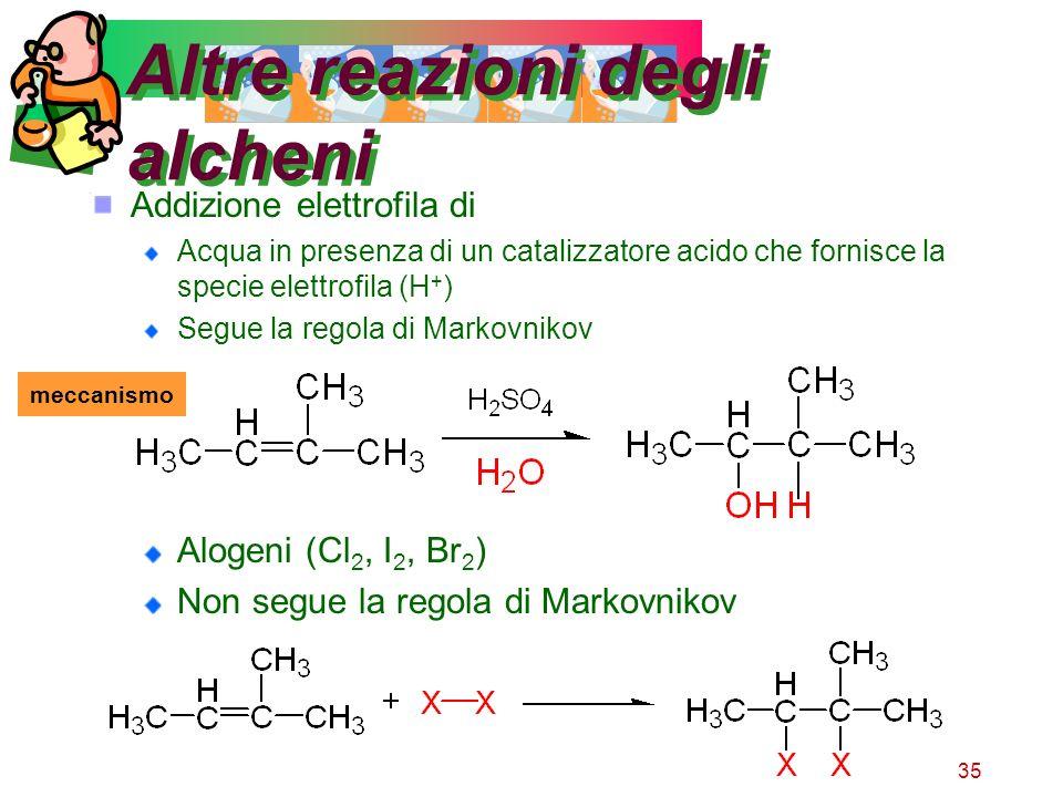 35 Altre reazioni degli alcheni Addizione elettrofila di Acqua in presenza di un catalizzatore acido che fornisce la specie elettrofila (H + ) Segue l