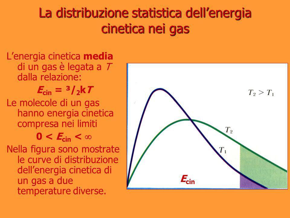 La distribuzione statistica dellenergia cinetica nei gas Lenergia cinetica media di un gas è legata a T dalla relazione: E cin = ³/ 2 kT Le molecole d