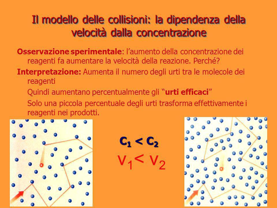 Osservazione sperimentale: laumento della concentrazione dei reagenti fa aumentare la velocità della reazione. Perché? Interpretazione: Aumenta il num
