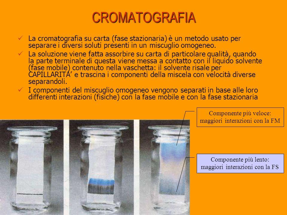CROMATOGRAFIA La cromatografia su carta (fase stazionaria) è un metodo usato per separare i diversi soluti presenti in un miscuglio omogeneo. La soluz