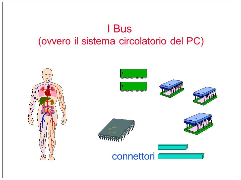 connettori I Bus (ovvero il sistema circolatorio del PC)