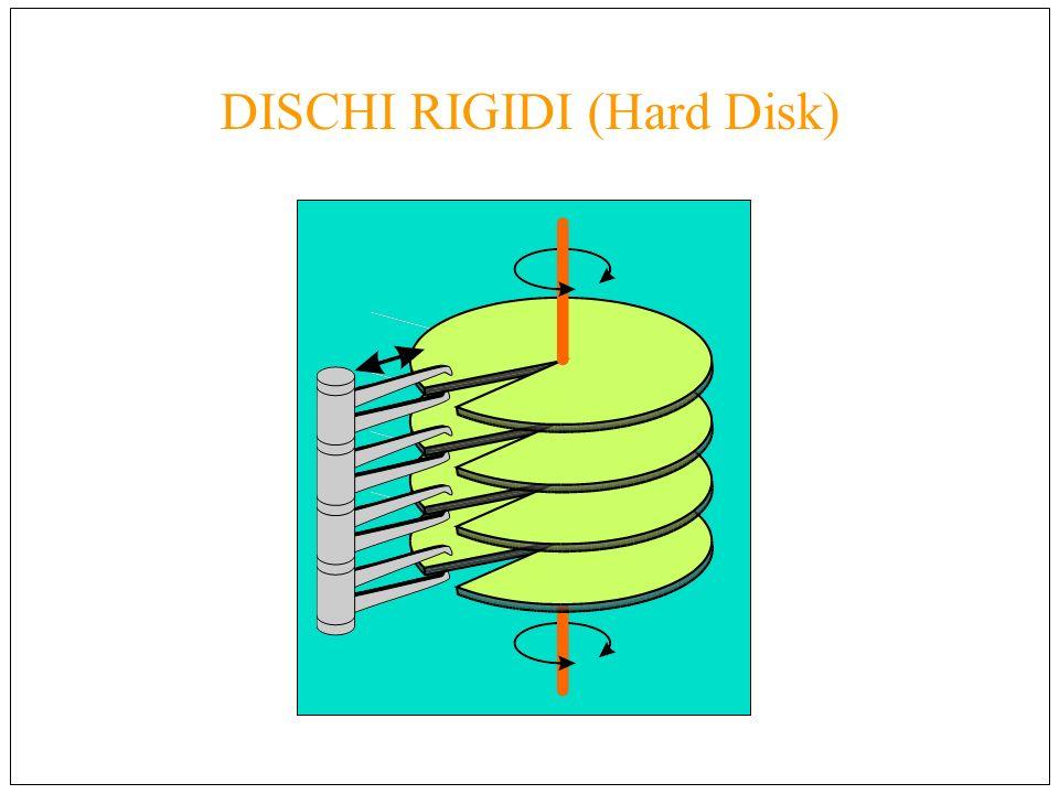 DISCHI RIGIDI (Hard Disk)