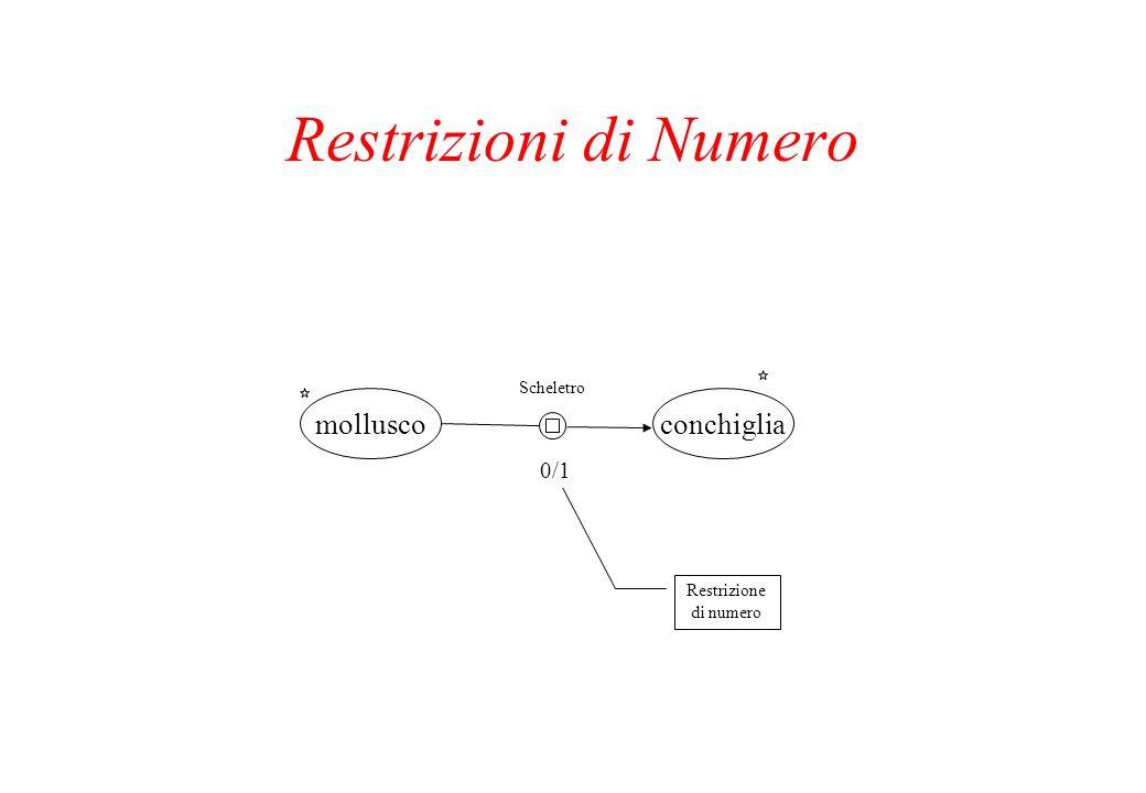 Restrizioni di Numero molluscoconchiglia Scheletro 0/1 Restrizione di numero