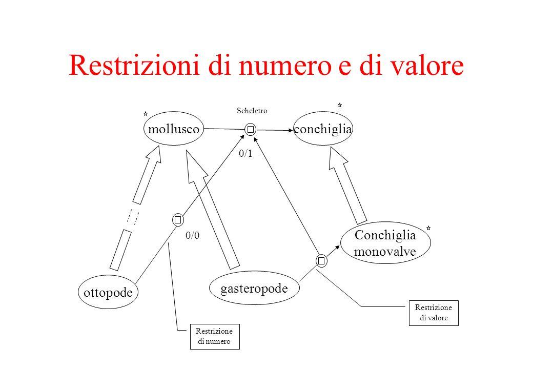 Restrizioni di numero e di valore molluscoconchiglia Scheletro 0/1 ottopode gasteropode Conchiglia monovalve 0/0 Restrizione di numero Restrizione di