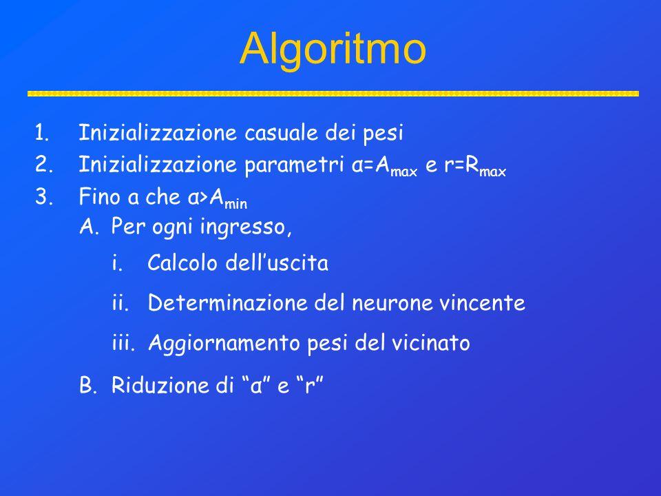 Algoritmo 1.Inizializzazione casuale dei pesi 2.Inizializzazione parametri α=A max e r=R max 3.Fino a che α>A min A.Per ogni ingresso, B.Riduzione di α e r i.Calcolo delluscita ii.Determinazione del neurone vincente iii.Aggiornamento pesi del vicinato