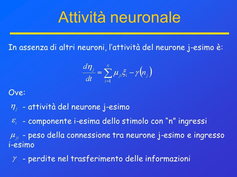 Attività neuronale In assenza di altri neuroni, lattività del neurone j-esimo è: Ove: - attività del neurone j-esimo - componente i-esima dello stimolo con n ingressi - peso della connessione tra neurone j-esimo e ingresso i-esimo - perdite nel trasferimento delle informazioni