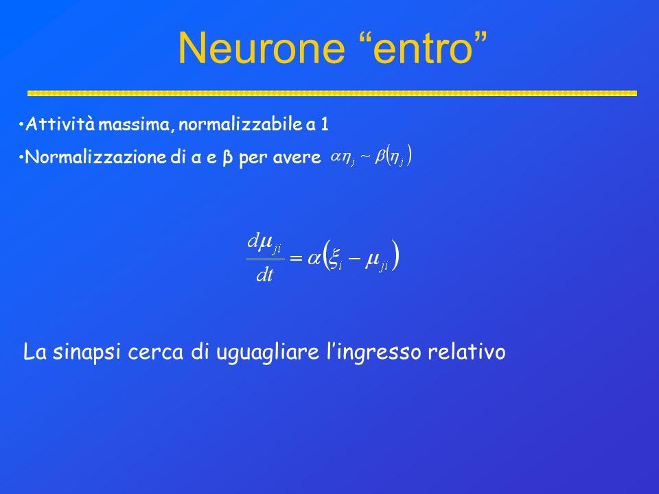 Neurone entro Attività massima, normalizzabile a 1 Normalizzazione di α e β per avere La sinapsi cerca di uguagliare lingresso relativo