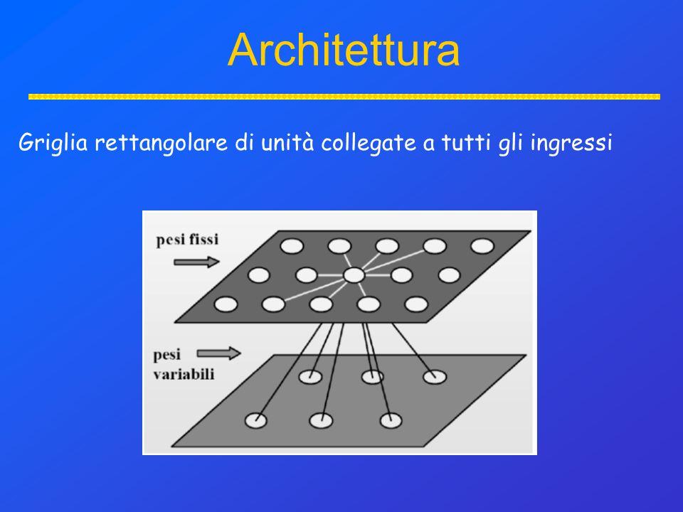 Griglia rettangolare di unità collegate a tutti gli ingressi Architettura