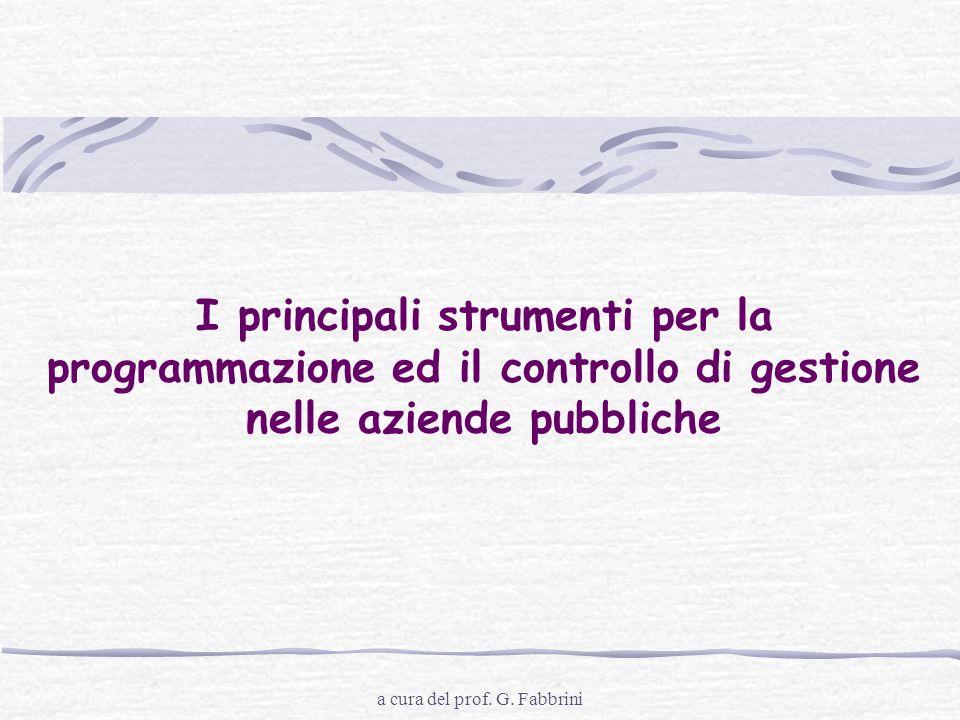 a cura del prof. G. Fabbrini I principali strumenti per la programmazione ed il controllo di gestione nelle aziende pubbliche