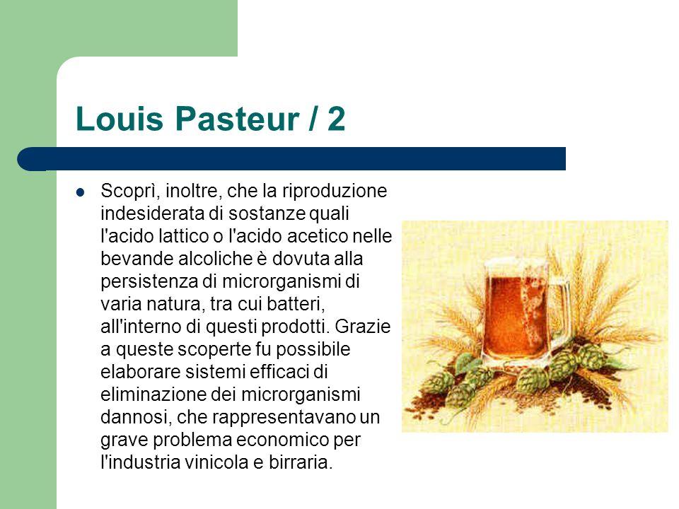 Louis Pasteur / 2 Scoprì, inoltre, che la riproduzione indesiderata di sostanze quali l'acido lattico o l'acido acetico nelle bevande alcoliche è dovu