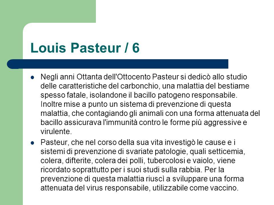 Louis Pasteur / 6 Negli anni Ottanta dell'Ottocento Pasteur si dedicò allo studio delle caratteristiche del carbonchio, una malattia del bestiame spes