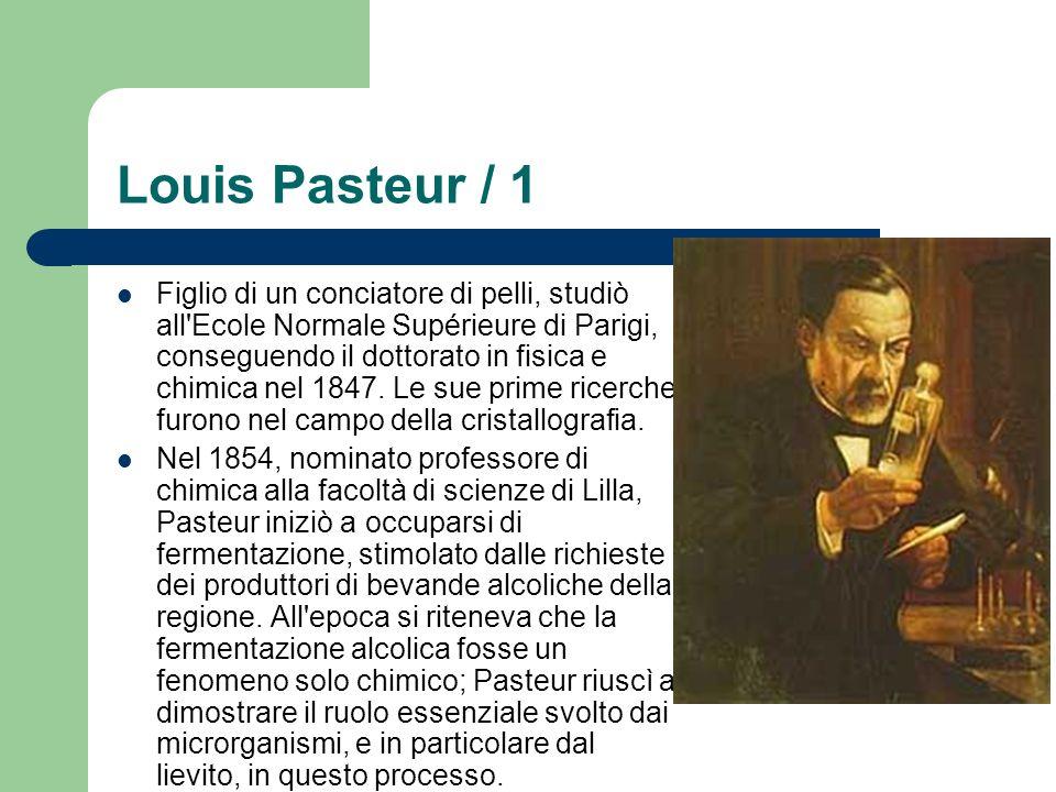 Louis Pasteur / 1 Figlio di un conciatore di pelli, studiò all'Ecole Normale Supérieure di Parigi, conseguendo il dottorato in fisica e chimica nel 18