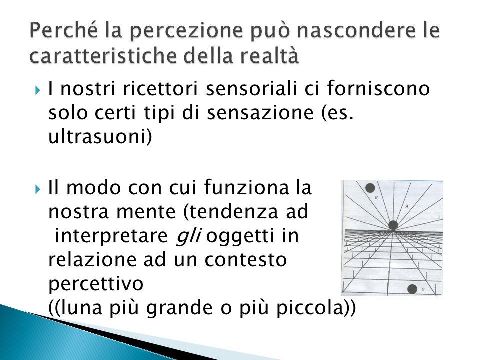 1.Tendenza a percepire in termini di figura sfondo (Coppa di Rubin, figure reversibili) 2.