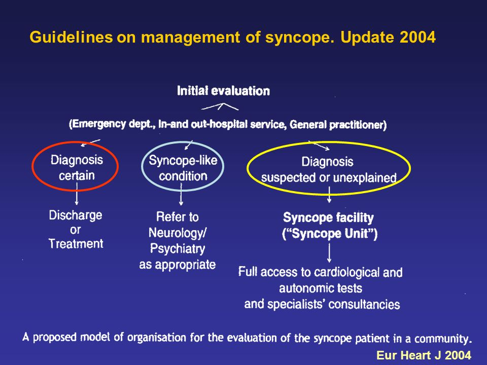 Eur Heart J 2004 Guidelines on management of syncope. Update 2004