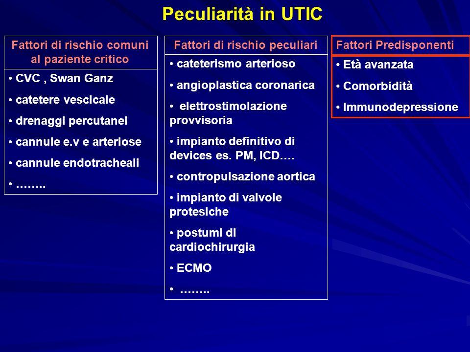 Peculiarità in UTIC Fattori di rischio comuni al paziente critico CVC, Swan Ganz catetere vescicale drenaggi percutanei cannule e.v e arteriose cannul