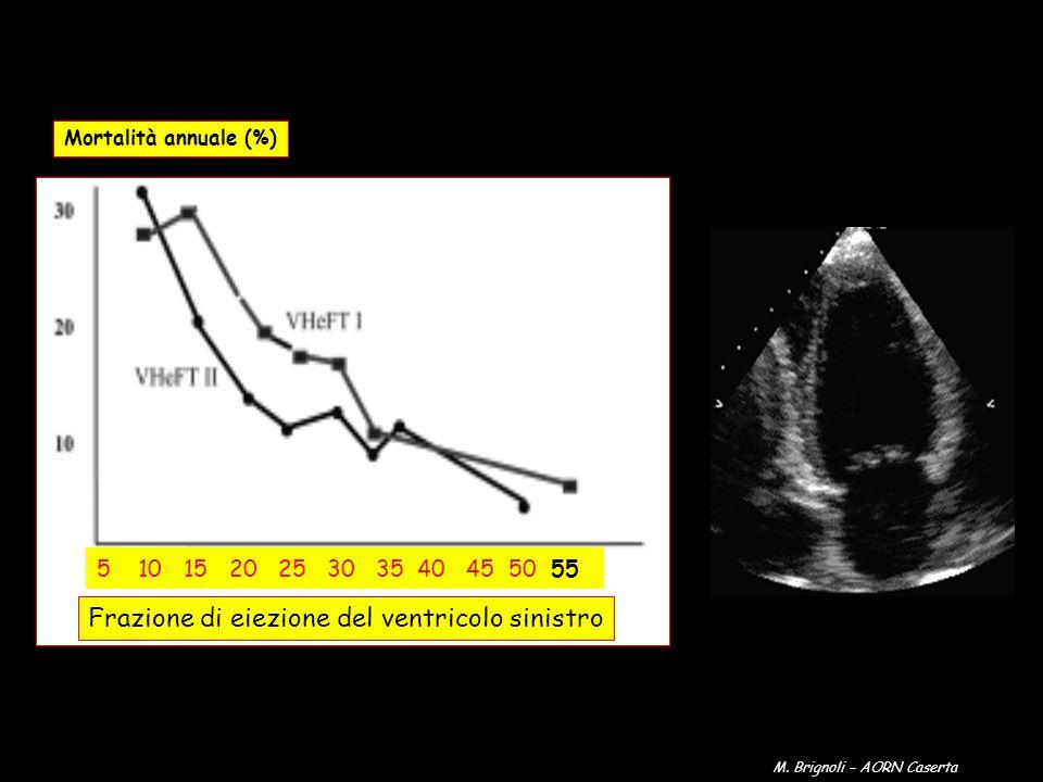 Mortalità annuale (%) Frazione di eiezione del ventricolo sinistro 5 10 15 20 25 30 35 40 45 50 55 M. Brignoli – AORN Caserta