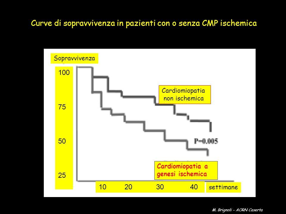 Sopravvivenza settimane Cardiomiopatia non ischemica Cardiomiopatia a genesi ischemica 100 75 50 25 10 20 30 40 Curve di sopravvivenza in pazienti con
