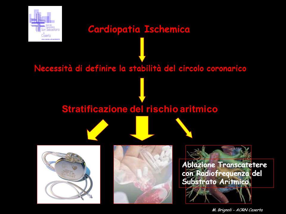 Cardiopatia Ischemica Necessità di definire la stabilità del circolo coronarico Stratificazione del rischio aritmico Ablazione Transcatetere con Radio