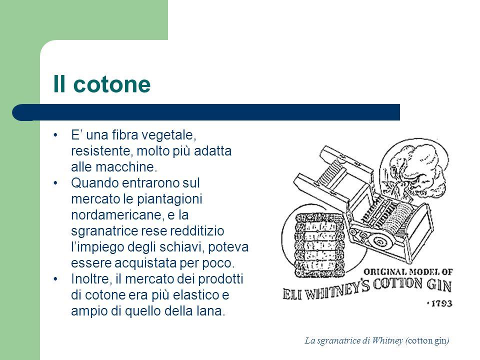 Il cotone E una fibra vegetale, resistente, molto più adatta alle macchine. Quando entrarono sul mercato le piantagioni nordamericane, e la sgranatric