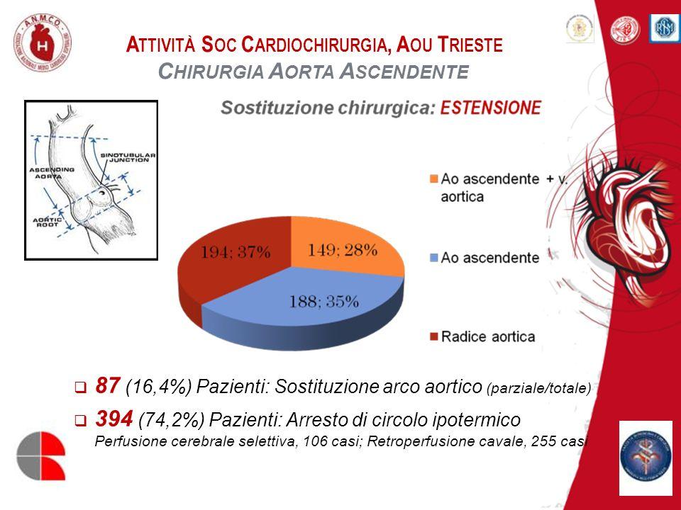 A TTIVITÀ S OC C ARDIOCHIRURGIA, A OU T RIESTE C HIRURGIA A ORTA A SCENDENTE 87 (16,4%) Pazienti: Sostituzione arco aortico (parziale/totale) 394 (74,
