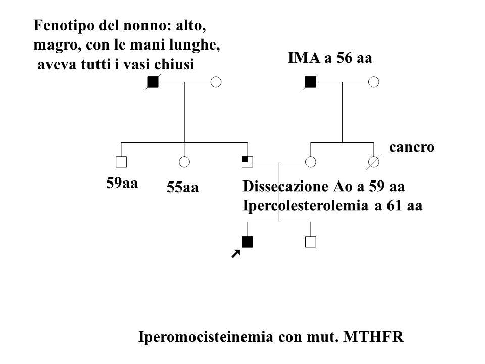 Fenotipo del nonno: alto, magro, con le mani lunghe, aveva tutti i vasi chiusi Dissecazione Ao a 59 aa Ipercolesterolemia a 61 aa 59aa 55aa cancro IMA