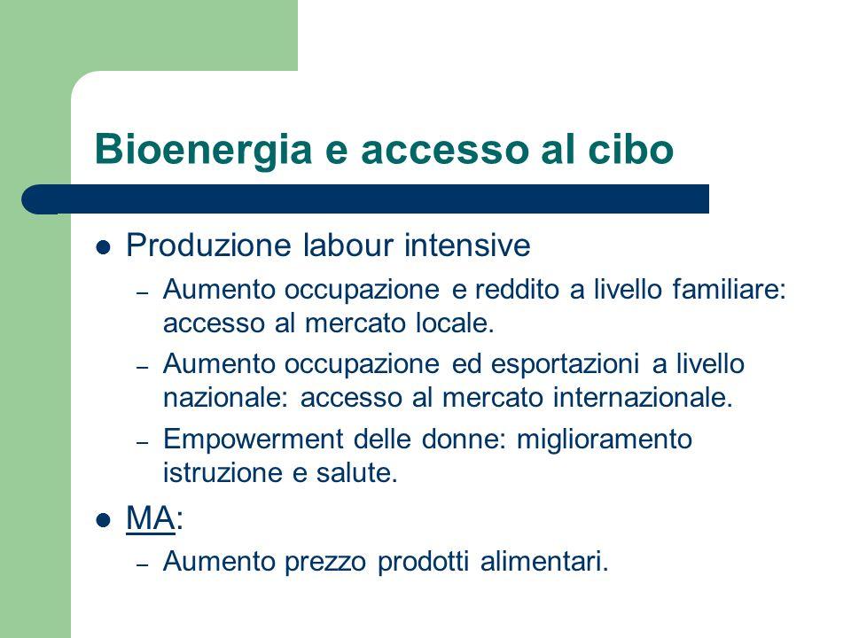 Bioenergia e accesso al cibo Produzione labour intensive – Aumento occupazione e reddito a livello familiare: accesso al mercato locale.