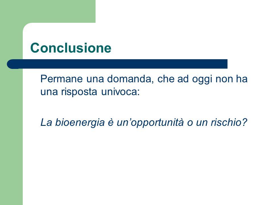 Conclusione Permane una domanda, che ad oggi non ha una risposta univoca: La bioenergia è unopportunità o un rischio?