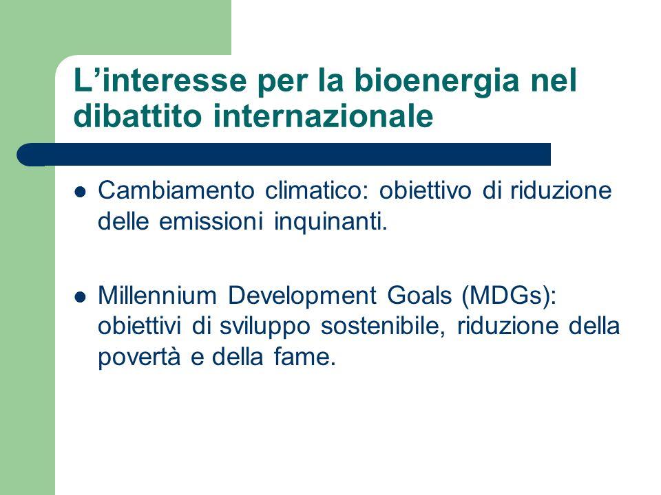 I Paesi in via di sviluppo Producono e consumano più dell85% della bioenergia mondiale.