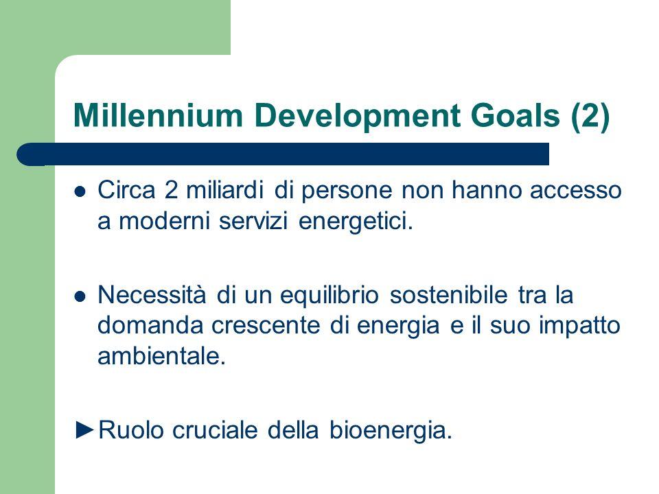 Importanza della bioenergia Paesi industrializzati Paesi emergenti Paesi in via di sviluppo