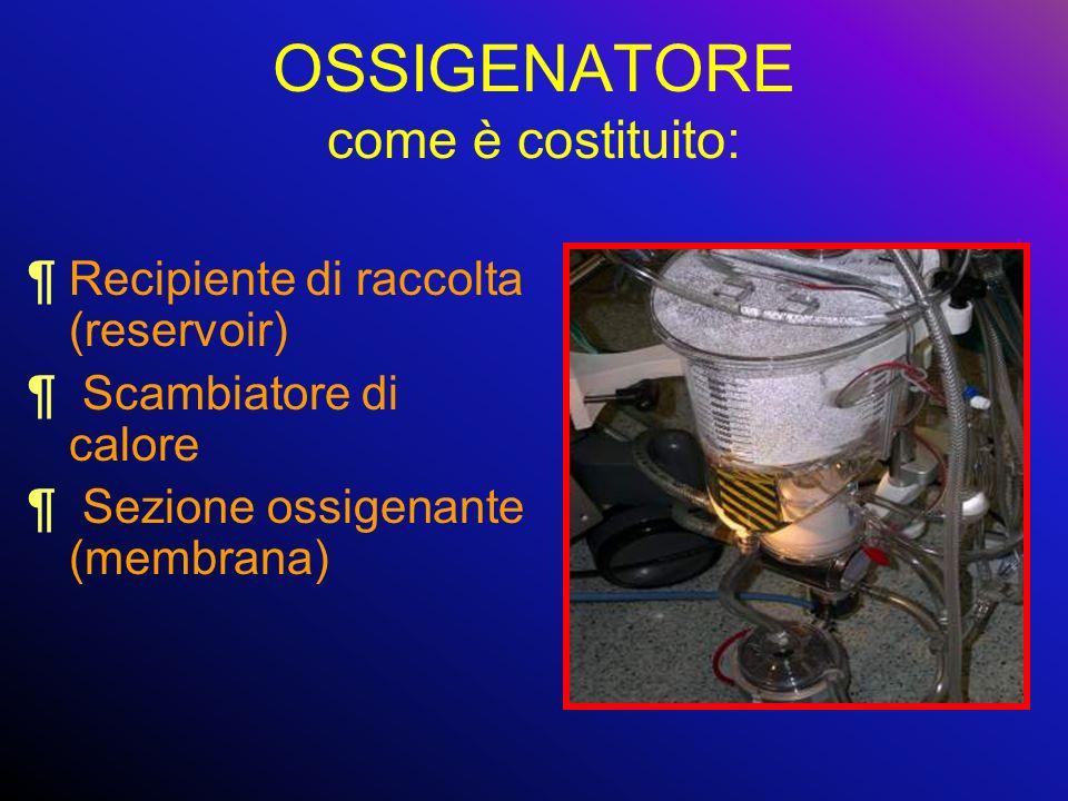 OSSIGENATORE come è costituito: ¶Recipiente di raccolta (reservoir) ¶ Scambiatore di calore ¶ Sezione ossigenante (membrana)