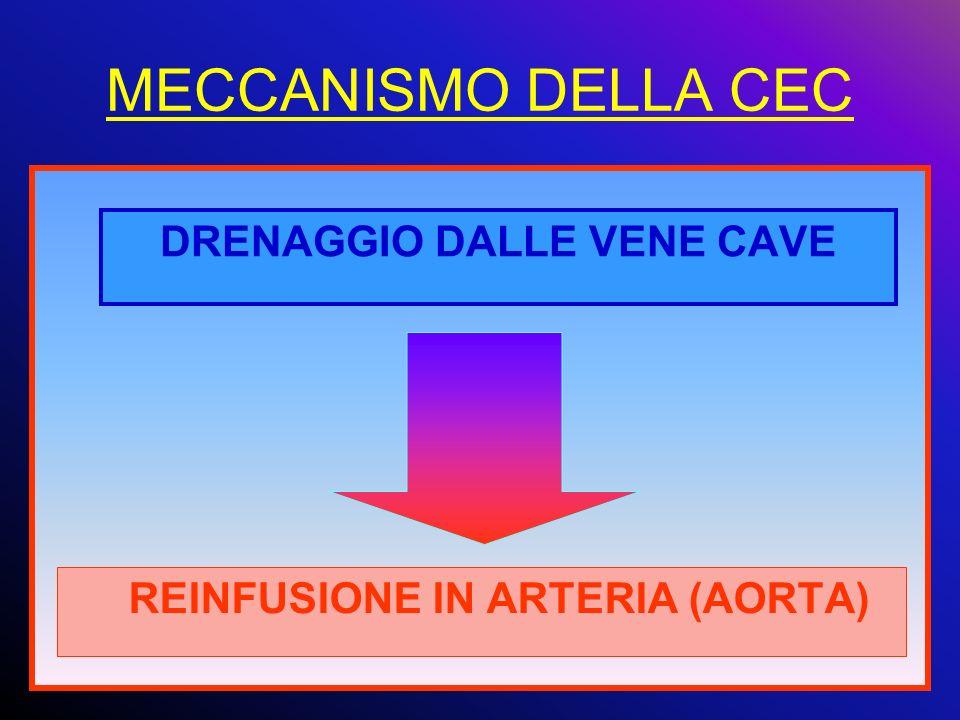 MECCANISMO DELLA CEC DRENAGGIO DALLE VENE CAVE REINFUSIONE IN ARTERIA (AORTA)
