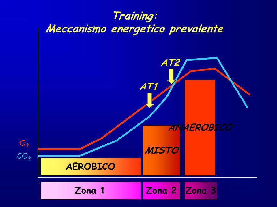 O2O2 CO 2 AT1 AT2 AEROBICO MISTO ANAEROBICO Training: Meccanismo energetico prevalente Zona 1Zona 2Zona 3