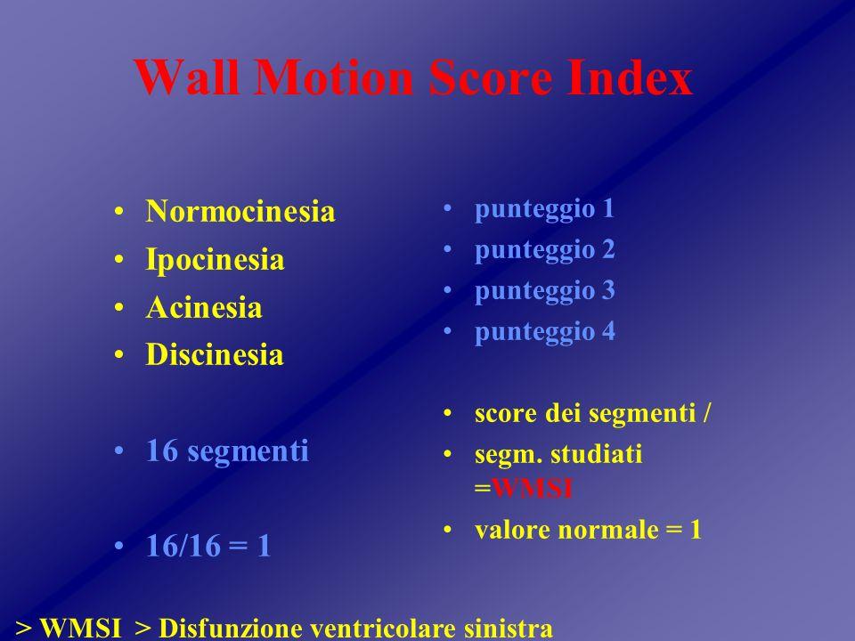 Wall Motion Score Index Normocinesia Ipocinesia Acinesia Discinesia 16 segmenti 16/16 = 1 punteggio 1 punteggio 2 punteggio 3 punteggio 4 score dei segmenti / segm.