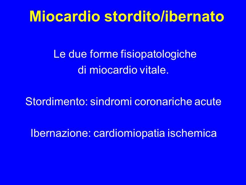 Miocardio stordito/ibernato Le due forme fisiopatologiche di miocardio vitale. Stordimento: sindromi coronariche acute Ibernazione: cardiomiopatia isc