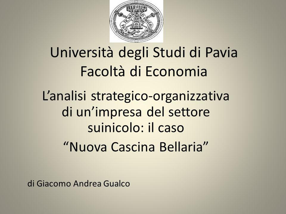 Università degli Studi di Pavia Facoltà di Economia Lanalisi strategico-organizzativa di unimpresa del settore suinicolo: il caso Nuova Cascina Bellar