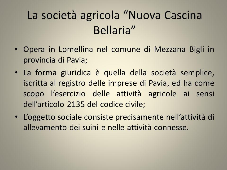 La società agricola Nuova Cascina Bellaria Opera in Lomellina nel comune di Mezzana Bigli in provincia di Pavia; La forma giuridica è quella della soc